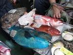 沖縄牧志公設市場の魚屋さんにて