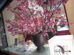 京都よーじや祇園店のディスプレイ