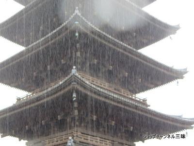 東寺(教王護国寺)の五重塔と梅