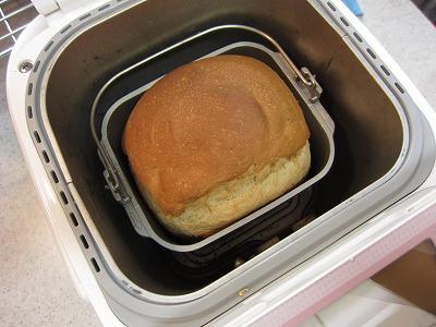 上出来の酒粕入り食パン♪